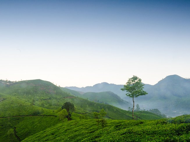 7 Days Meditation and Yoga Retreat in Kerala, India