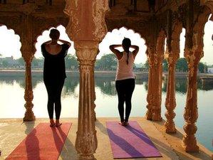 15 días tour de yoga y meditación en India