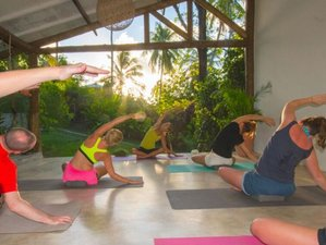 7 Days Surf and Yoga Retreat in Paradisiacal Pipa, Brazil