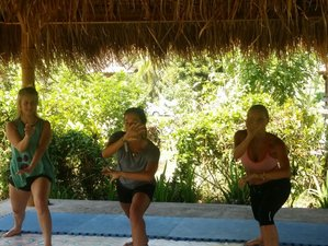 7 Days Balinese Pencak Silat Martial Arts, Meditation and Yoga Retreat in Bali, Indonesia