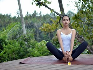 6 Days New Year Meditation and Yoga Retreat in Bali
