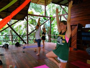 8 Days Fitness and Yoga Retreat in Costa Rica on the Carribean
