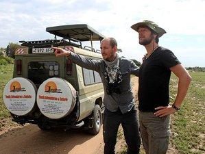 7 Days Serengeti Great Migration Safari Tour in Tanzania