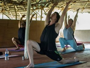 59 Days 500 Hour Yoga Teacher Training in Kerala, India