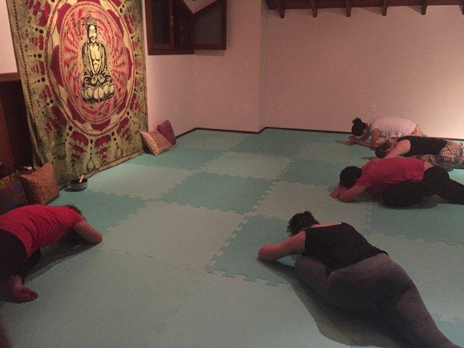 26 Tage 200-Stunden Vinyasa Flow Yoga Yogalehrer Ausbildung in Brasilien