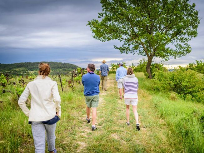 2 Days Grape Stomping and Culinary Holidays in France