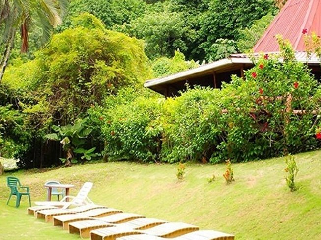 6 Days Surf and Yoga Retreat Costa Rica