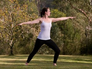 6 Days Detox, Cleanse, and Yoga Holiday in NSW