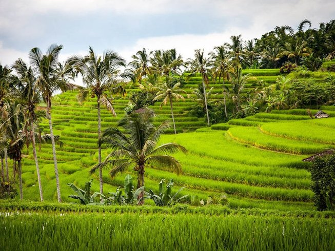 4 Days Under The Sun Culinary Holidays in Bali, Indonesia