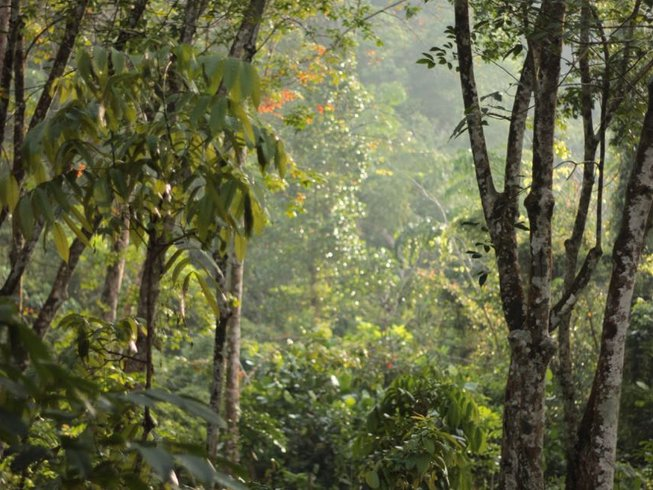 28 Tage Ayurveda Yoga Retreat in Kalutara, Sri Lanka