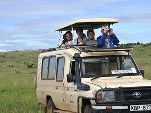 5 Days Game Park Safari in Tanzania