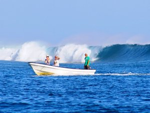 8 Days Samoa Surf Holidays
