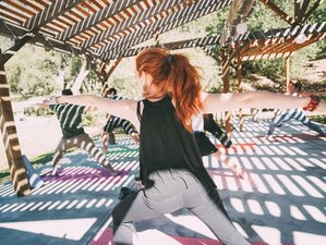 6 Day Find Your Secret Key: Silent Meditation, Yoga, and Detox Retreat in Santa Ysabel, California