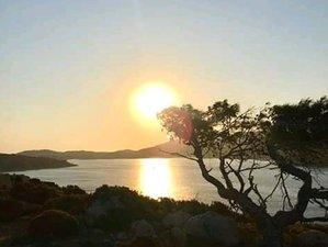 8 Day Solstice Yoga Retreat to Awake the Fire Element the Sun within,Phlea Farm Leros Island, Aegean