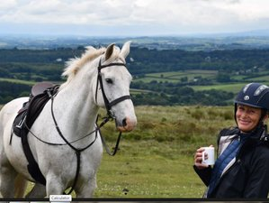 4 Days Incredible Riding With Olympian Mary King MBE in Dartmoor, UK