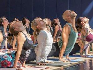 7 días retiros de yoga y Ayurveda en Rishikesh, India