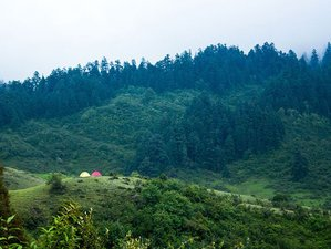 6 Day Budget Safari in Khaptad National Park, Nepal
