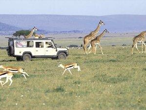 4 Days Classic Kenya Safari
