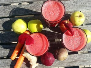 8 Days Fresh Juice Detox and Yoga Retreat Portugal