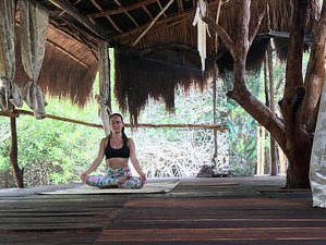 14 Day 200-Hour FitFlowYoga Teacher Training in Tulum, Quintana Roo