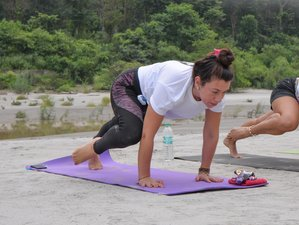 4 Day Yoga for Complete Beginners in Rishikesh