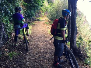 8 Days Guided Electric Mountain Bike Holiday in Madeira, Portugal