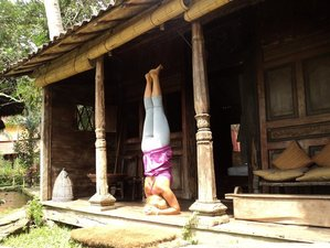 7-Daagse Surf en Yoga Retraite in Bali