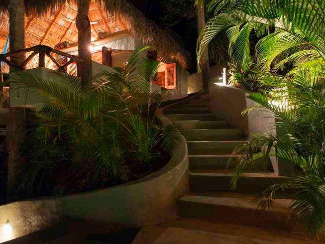 8 Days Jungle Yoga Retreat San Francisco, Mexico