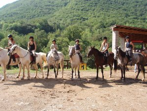 2 Day All-Level Horse Riding Holiday in the Catalan Pyrenees