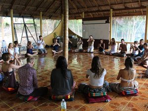 "8 Days ""Ecstatic Nature"" Yoga Retreat Koh Phangan, Thailand"