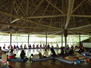 9 Days Intensive Ayahuasca Yoga Retreat in Peru