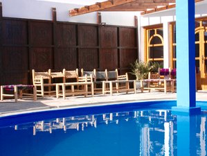 8 Days Unforgettable Surf and Yoga Holiday in Agadir, Morocco