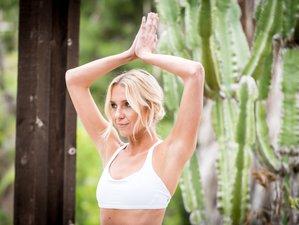 5 Days Rejuvenating Meditation and Yoga Retreat Montana, USA