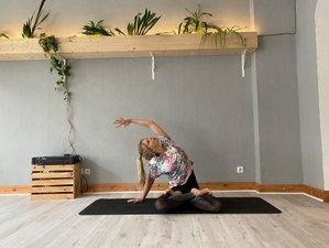 200-Stunden Online Hatha Yogalehrer Ausbildung