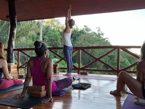 13 Day 200hr 'Accessible' Yoga Teacher Training with Focus on Teaching Beginners in Costa Rica