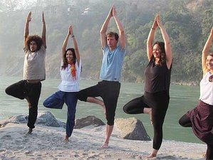 29 Day 200-Hour Yoga Teacher Training in Rishikesh