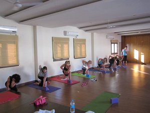 11 Days Meditation and Yoga Retreat in Rishikesh, India