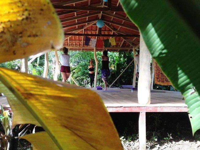 7 días de los cinco elementos y retiro de yoga en Limón, Costa Rica