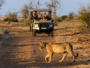 5 Days Chobe National Park Safari