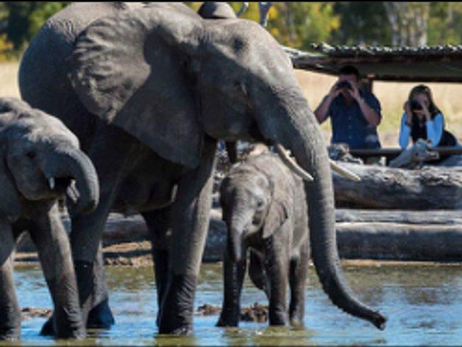 12 Days Rivers, Plains, and Delta Botswana Safari