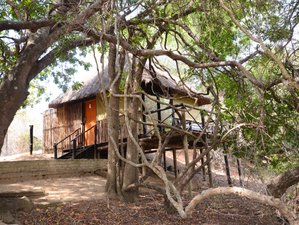 5-Daagse Lodge en Boomhut Safari in Balule Nature Reserve en Kruger National Park, Zuid-Afrika