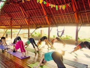 7 Days Healing Energies and Vibrancy Yoga Holiday with Sonia Azad in Gianyar, Bali