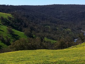 3 Day Yoga Retreat at Mooddyne Country Retreat in Avon Valley National Park, Western Australia