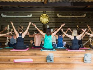 4 Day Alive Retreat with Yoga, Meditation, and Ayurveda in Buderim, Queensland