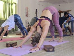 24 Day 200 Hour Vinyasa Yoga Teacher Training Course in Rishikesh