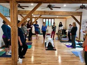 12 Weeks 200-Hour Online Kundalini Warrior Yoga Teacher Training