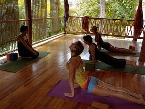 5 Day Budget Yoga Retreat in Santa Teresa de Cobano, Puntarenas
