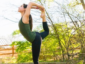 14 jours en stage de yoga revigorant en Inde