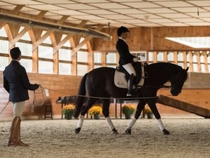 5 Day Developing and Refining Fundamental Dressage Skills Riding Package in Merrimac, Massachusetts