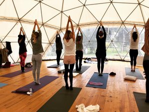 2 Day Weekend Yoga Retreat: Immerse Yourself in Your Yoga Practice and in Nature near Meco